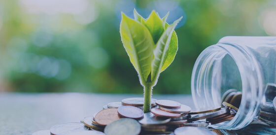 Socially Responsible Investing: Skyline Clean Energy Fund