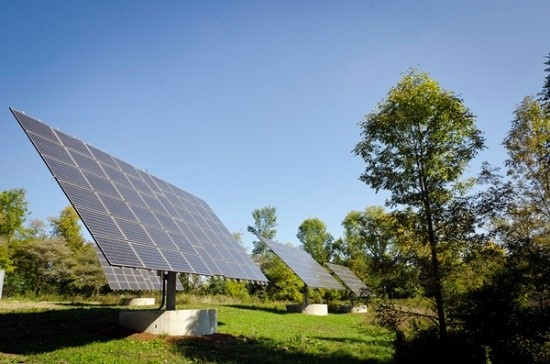 Solar panels in grassy field with a couple trees